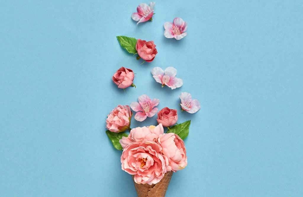 Minimal Floral Scene